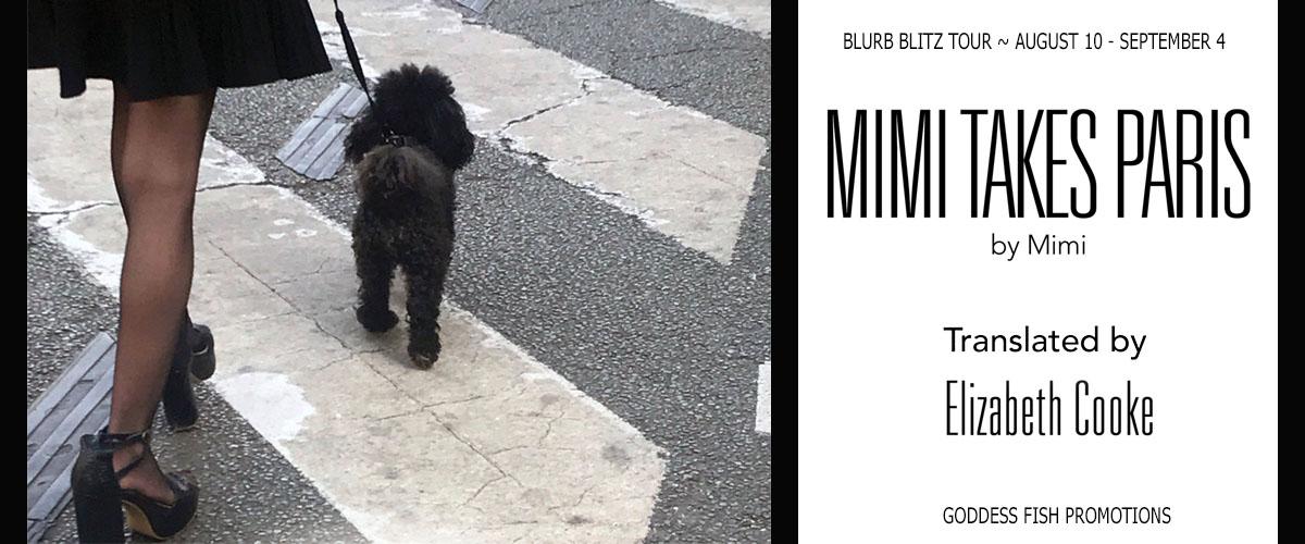 Blurb Blitz: Mimi Takes Paris by Elizabeth Cooke
